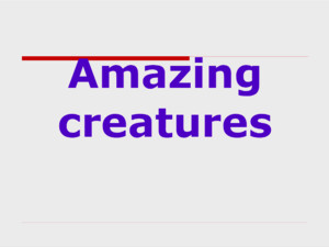 Amazing creatures Practice Speaking aboutSpeaking about animals and pets; Listening;Listening; Writing tests andWriting tests and sending an e-mail;