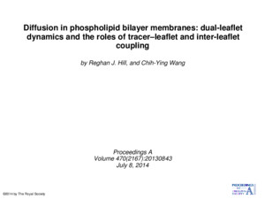 Diffusion in phospholipid bilayer membranes: dual-leaflet dynamics and the roles of tracer–leaflet and inter-leaflet coupling by Reghan J Hill, and Chih-Ying
